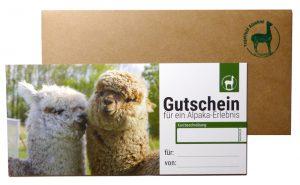 Gutschein für ein Erlebnis bei den Tegelfeld Alpakas
