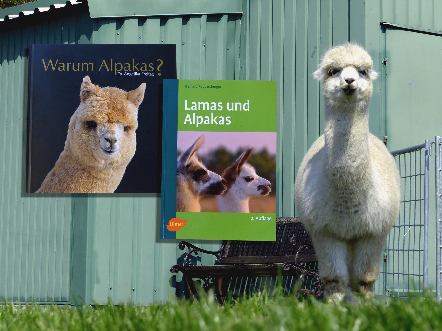 Buchempfehlung für die Alpakahaltung