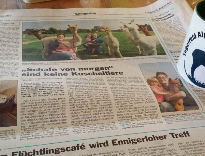 Tegelfeld Alpakas in der Zeitung